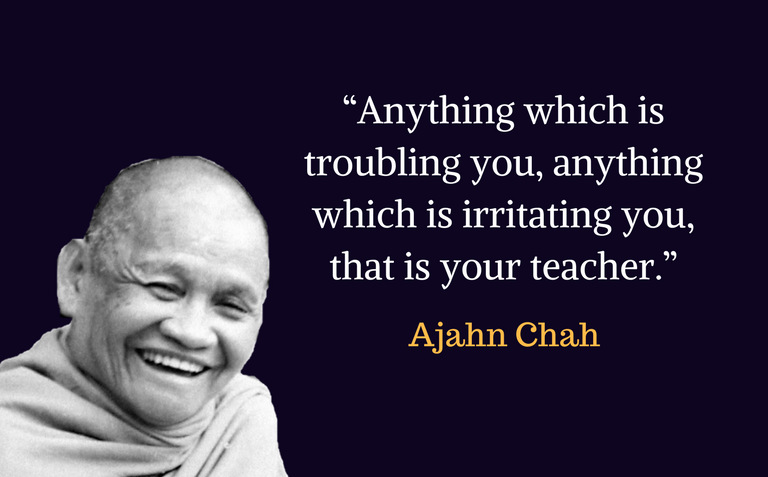 """""""Anything which is troubling you, anything which is irritating you, that is your teacher."""""""