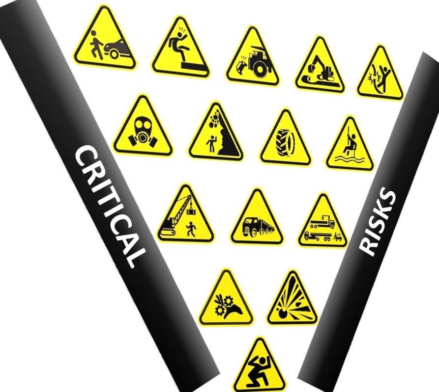 Critical Risks