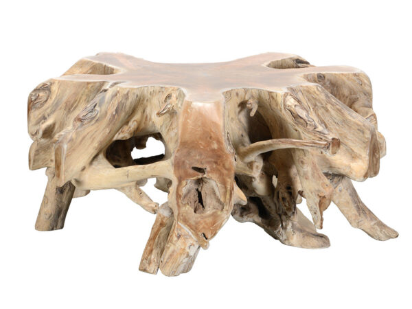 Root coffee table organic shape light color