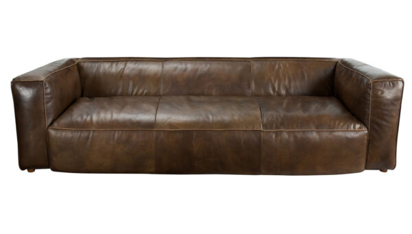 Modern leather sofa front view