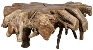 Large Teak Root Coffee Table