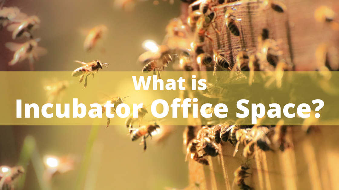 What is Incubator Office Space?