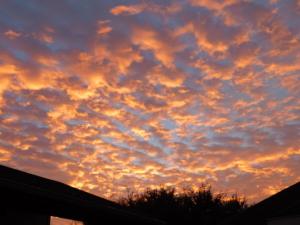 Rafter O Sunset