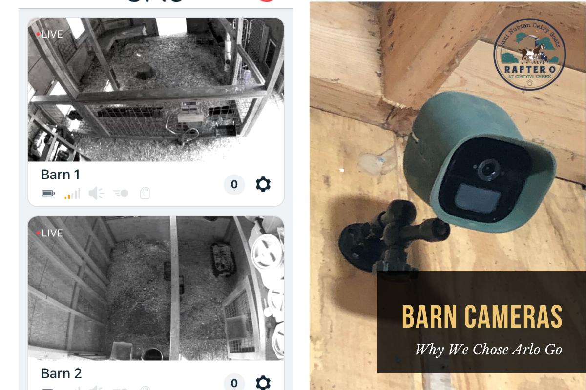 Barn Cameras - Why we chose Arlo Go