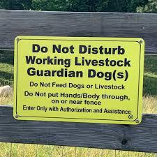 Do Not Disturb Working LGD Sign