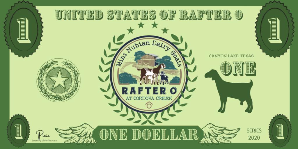 Rafter O Doellar Reward Program