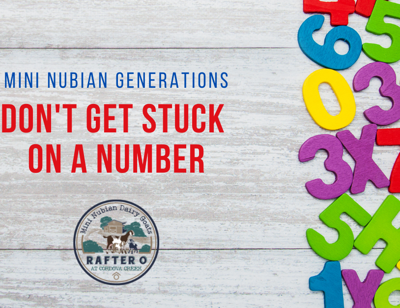 Blog: Mini Nubian Generations