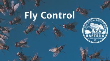 Fly Control Blog