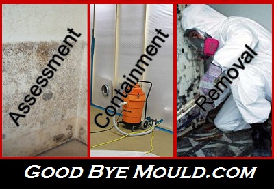 UNMARKED VEHICLES  Mould Removal & Testing