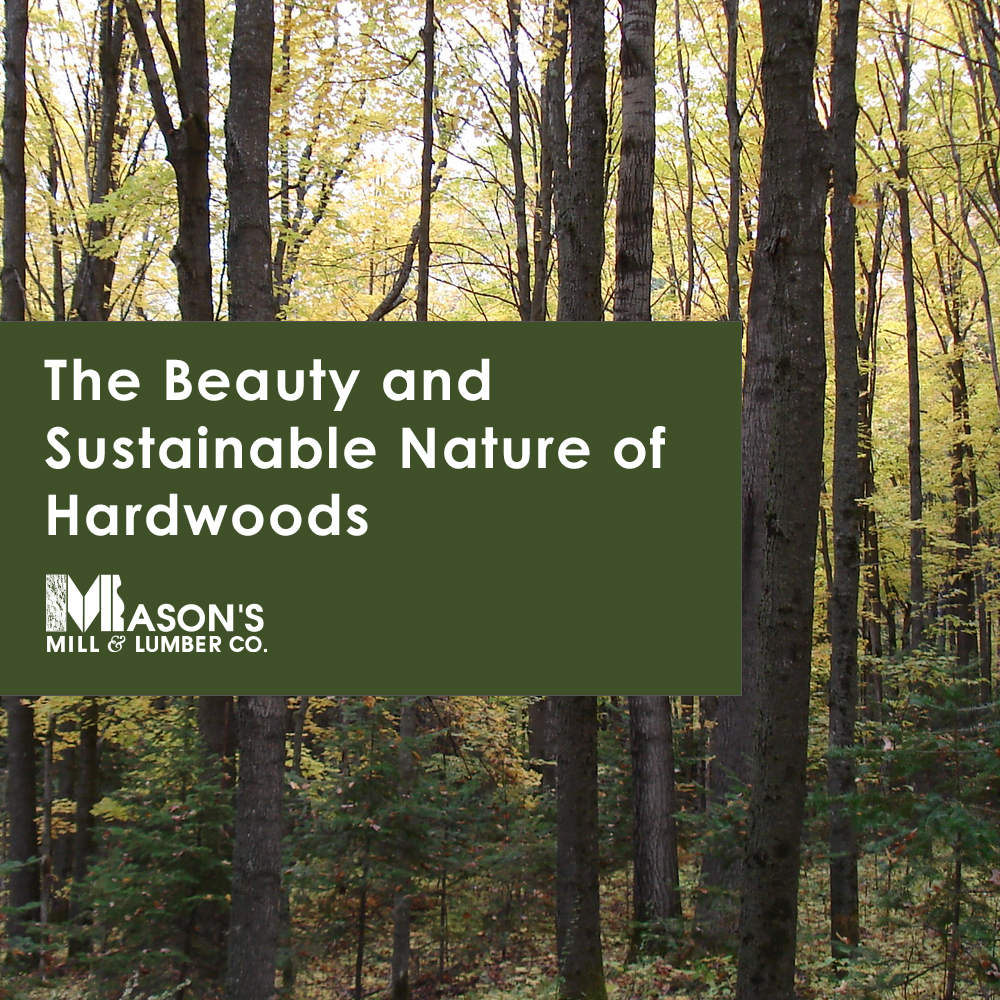 The Beauty and Sustainable Nature of Hardwoods