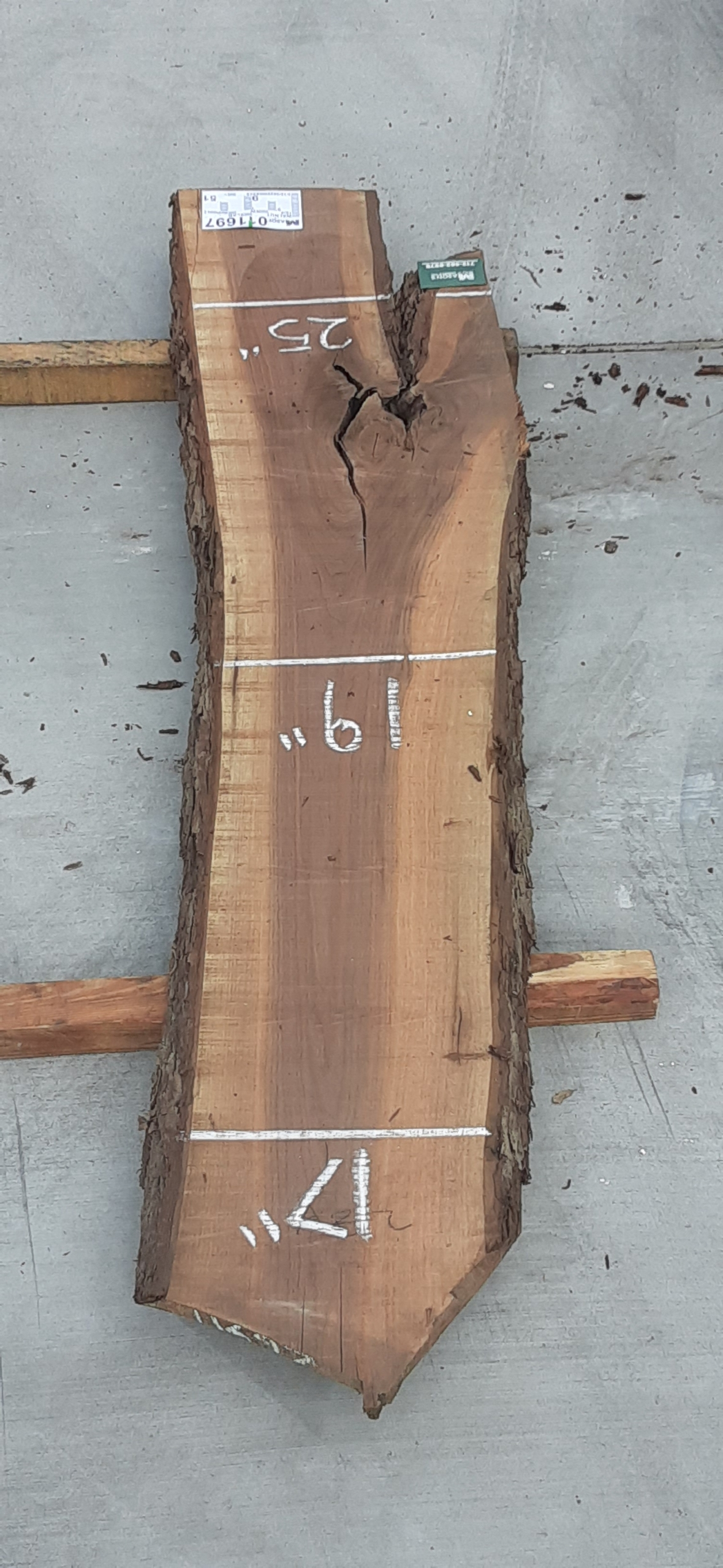 Walnut Slab 11697 Image