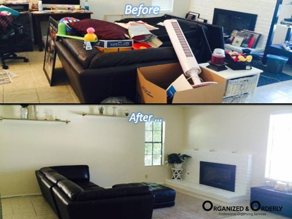 Professional Living Room Organization Services