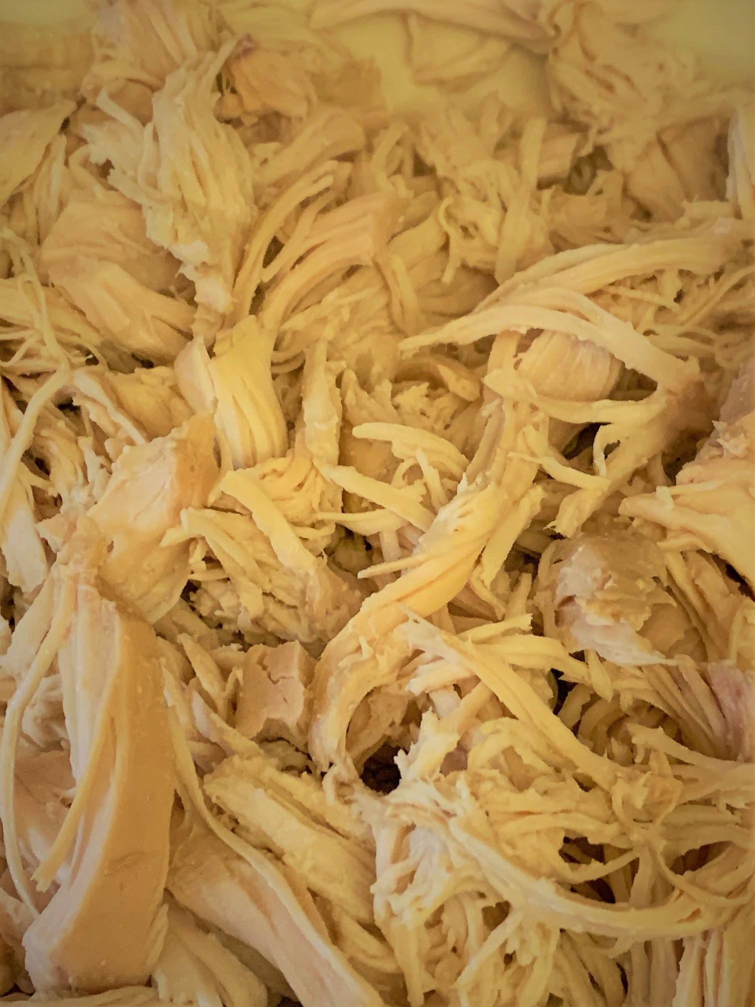 The Shredded Chicken for our Loaded Buffalo Chicken Tots from The Friar's Nook