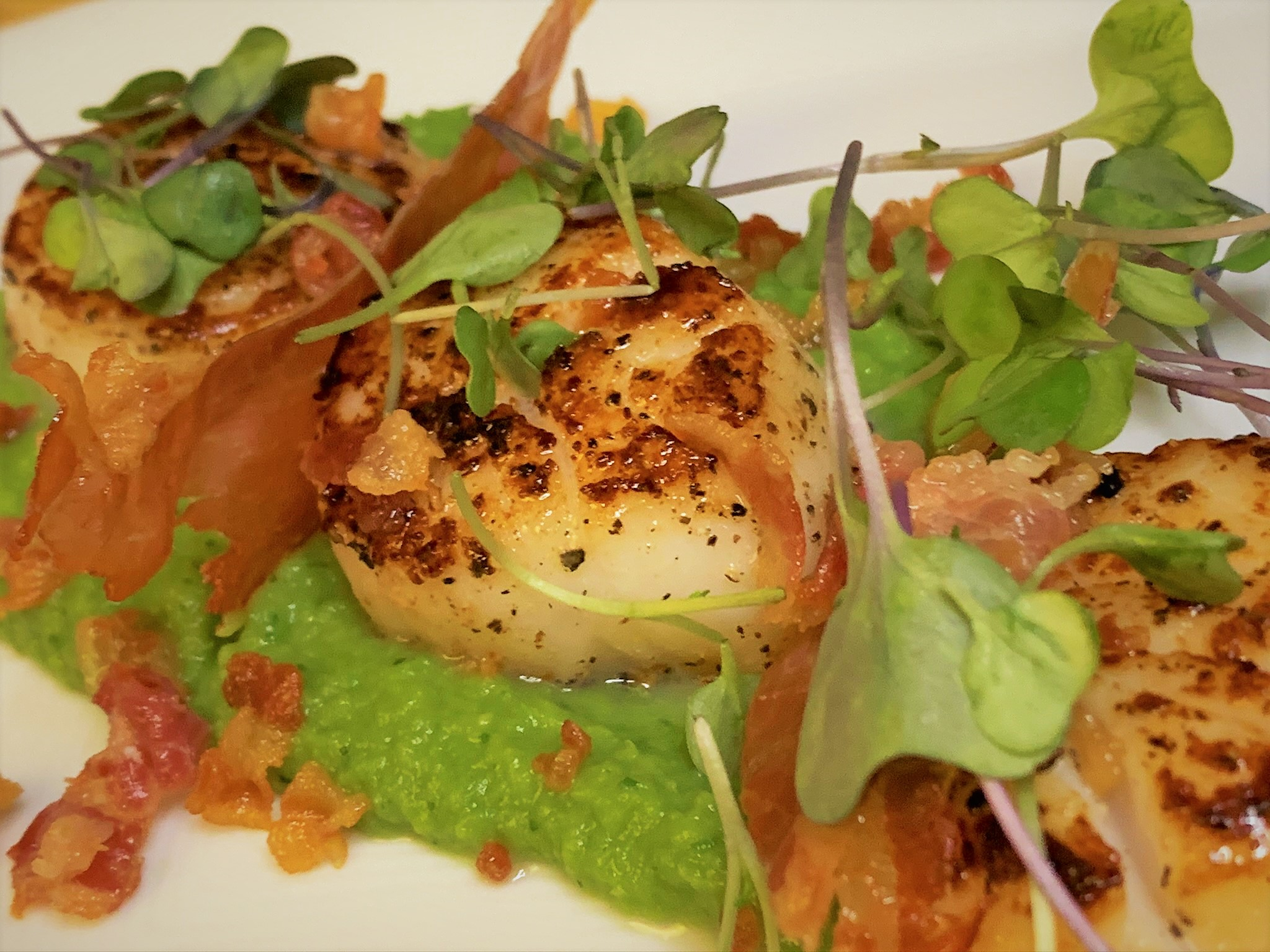 Our plated Pancetta Seared Scallops with Crispy Prosciutto & Minted Pea Puree
