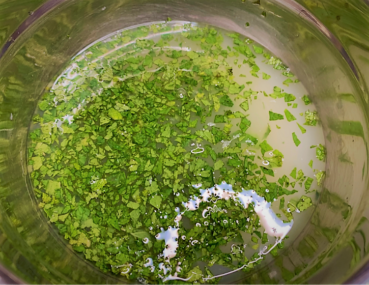Lime-Mint Foam ingredients combined in a large bowl