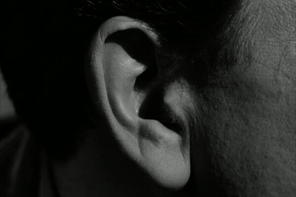 close-up-ear