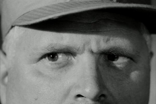 close-up-eyes