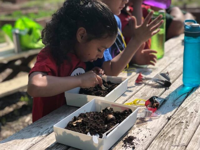Members of the Cultivating Kids Garden Program learning a lesson about all the critters who live in soil.
