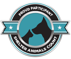 Shelter Animals Count