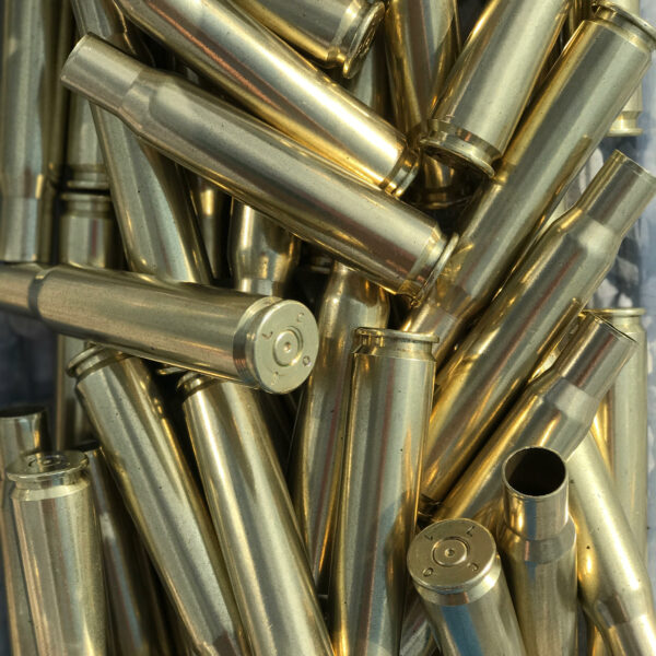 polished 50 BMG brass