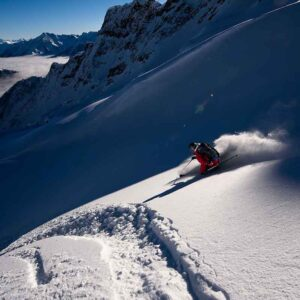powder, snow, revelstoke, backcountry, heliskiing, Bison Lodge, bison, skiing,