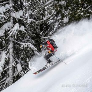 skiing, heliskiing, cat skiing, bc, Revelstoke, Bison Lodge, powder,