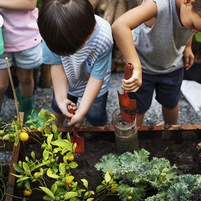 Kids in vegie garden_1000px