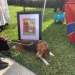 2019-AnimalBlessings_Beaglein frontofStFrancis Icon