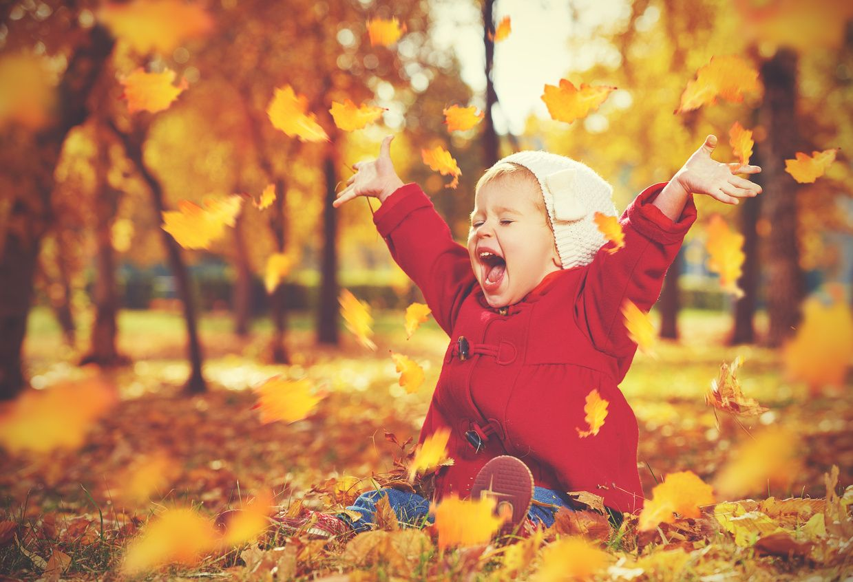 Laughing child in the autumn leaves