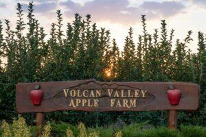 Volcan Valley Apple Farm in Julian