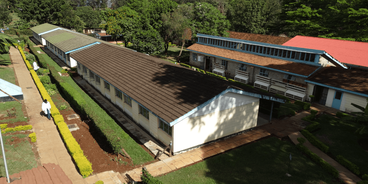 Embu University College