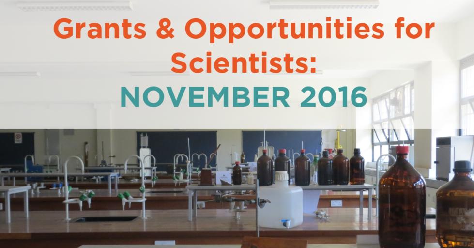 November 2016 Grants & Opportunities