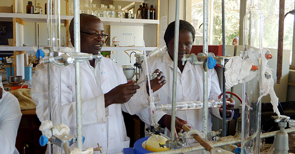 Scientists at bench