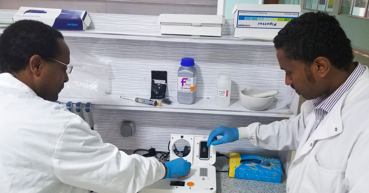 Dr. Abraham Tesfaye, Post Doc fellow and Dr. Tsegahun M Scientific coordinator in the lab
