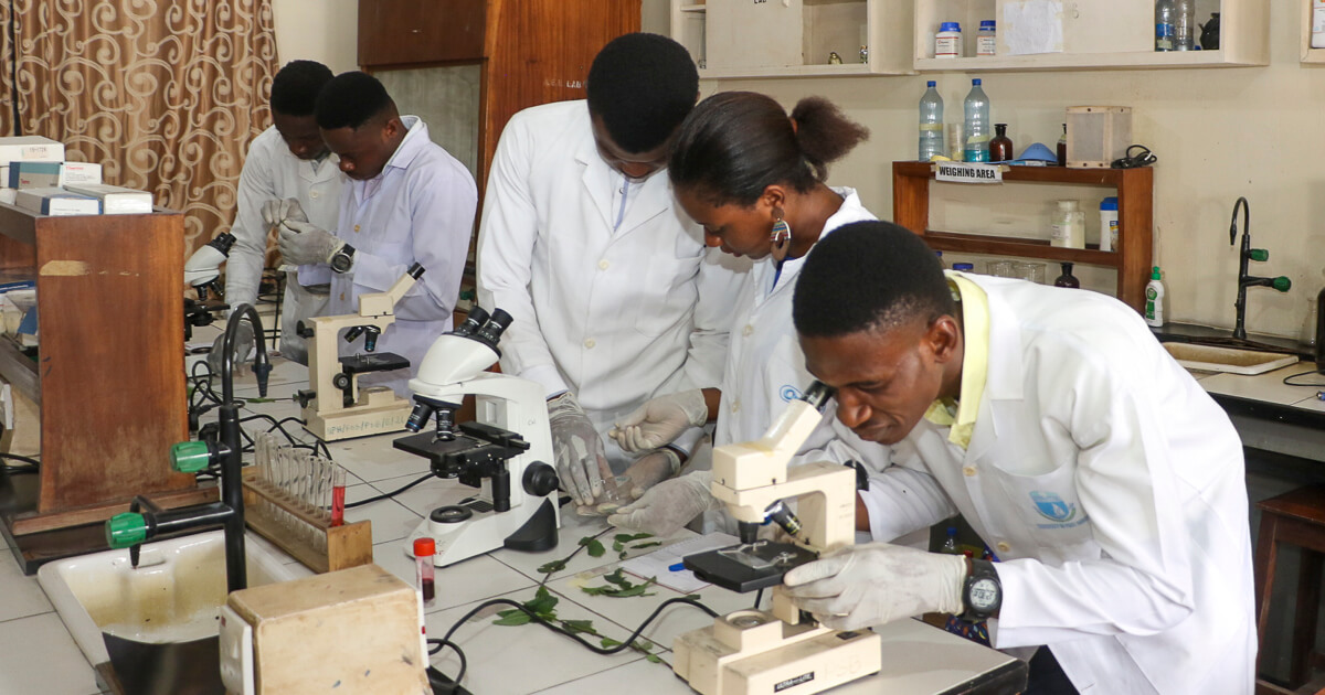 Plant Science and Biotechnology students working with microscopes in the lab