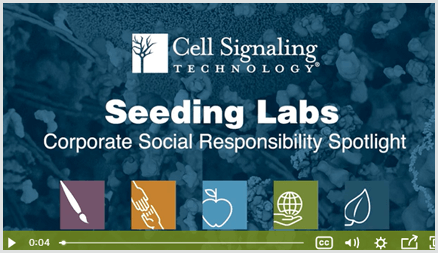 Cell Signaling Technology VIdeo
