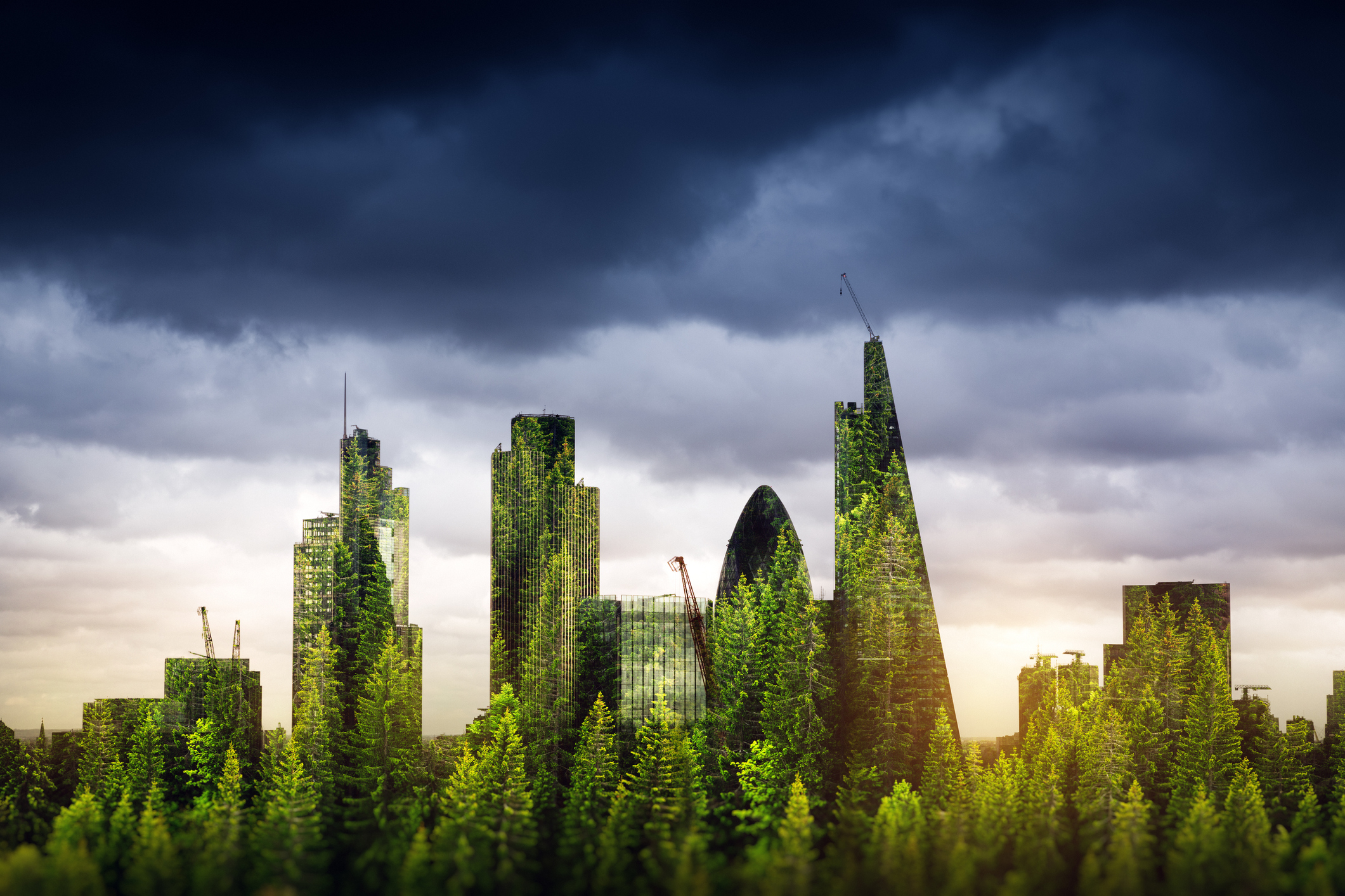 5 Ways to Reduce Embodied Carbon on Your Next Building Project