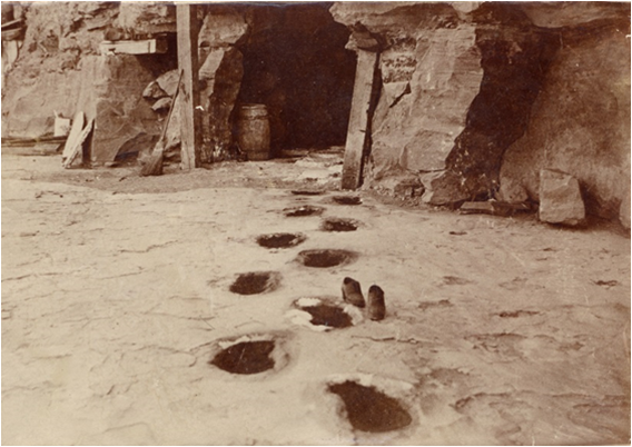 Footprints of giant sloth. Note the pair of shoes next to one of the prints.