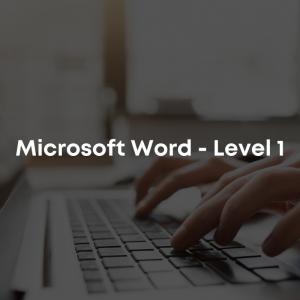 Microsoft Word - Level 1