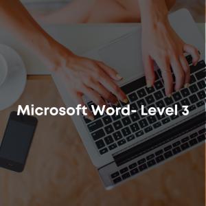 Microsoft Word - Level 3