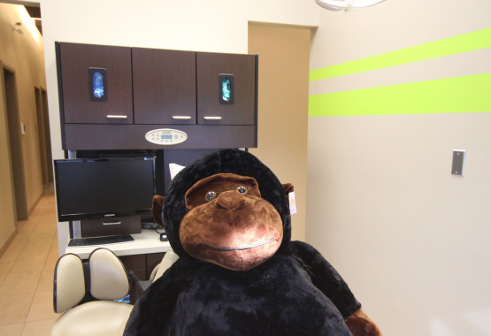 Gus the Mint Dental Clinic Mascot