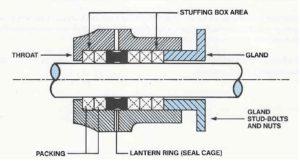 Stuffing Box Diagram