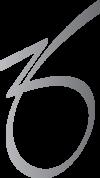 ZO Icon-Silver Reflect