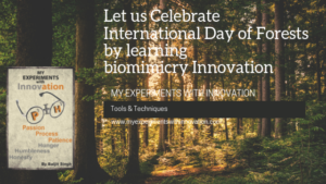 Let us Celebrate the International Day of Forests by Learning Innovation Inspired by Nature
