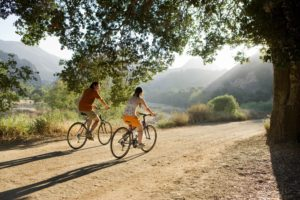healthy lifestyle for memory
