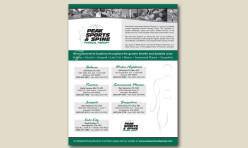 Flyer / Handout Design