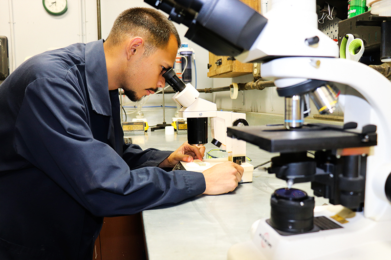 Evaluating adhesive penetration into a finger joint sample