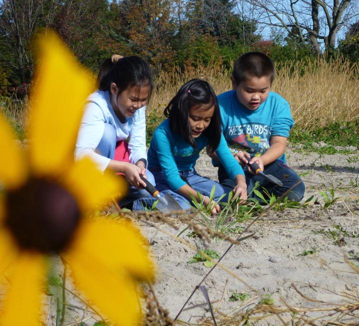 Three children gardening