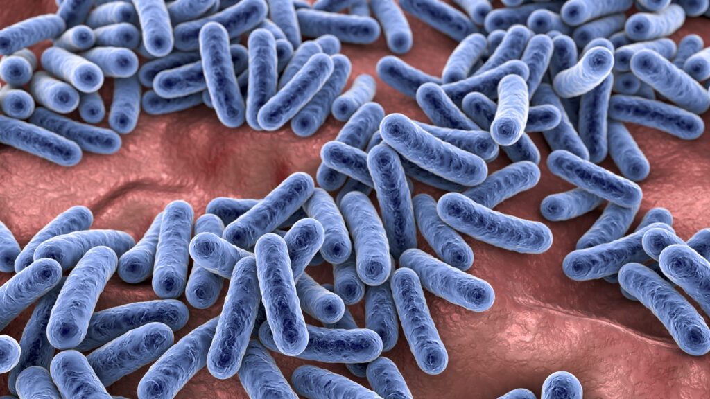 A 3D illustration showing a close up of bacteria