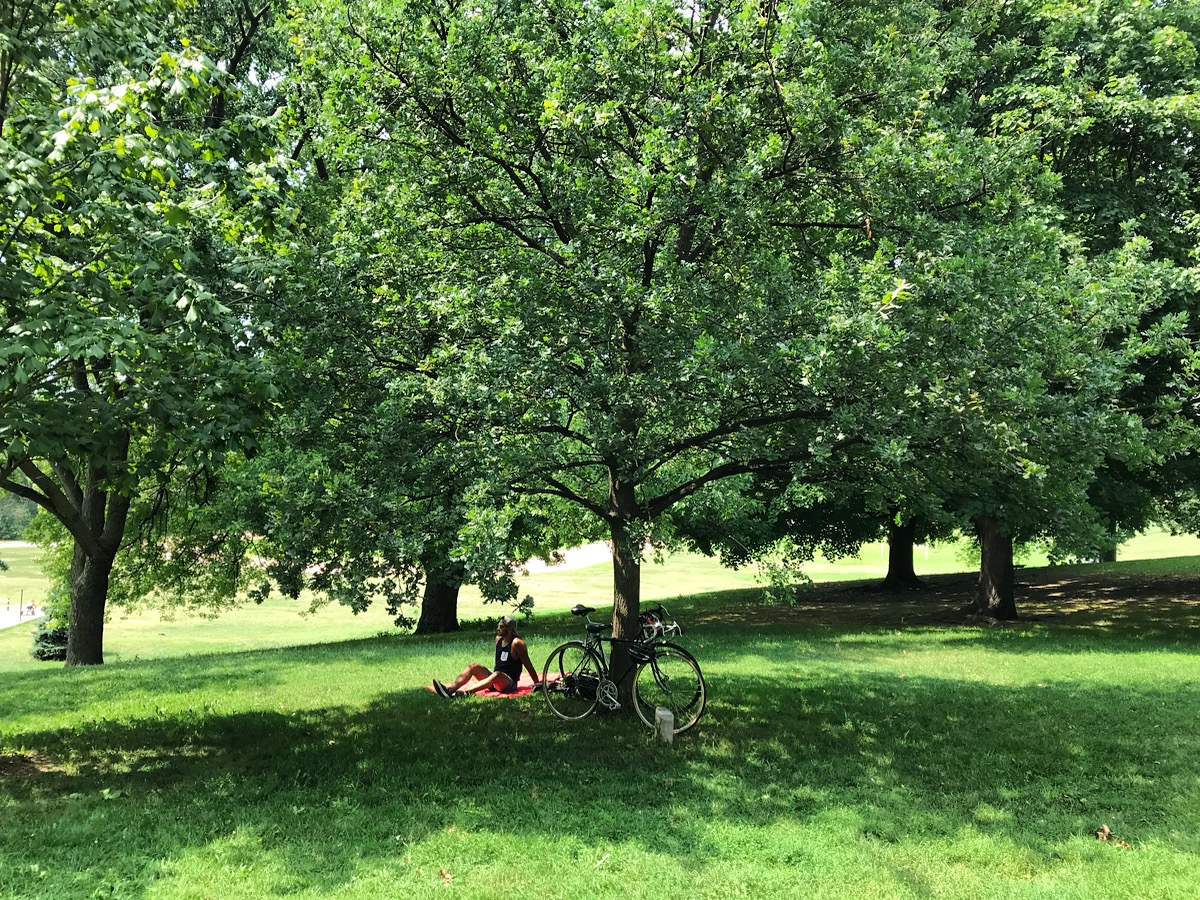 A person rests in the shade under a tree in Riverdale Park East